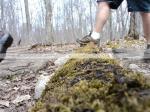 Hiking, Mossy Log, Merrell
