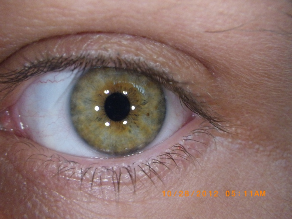 Eye Upclose, Green/yellow eye, Green Eye, Hazel Eye, Brownish/Green Eye